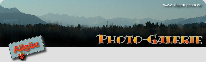 logo allgaeu-photo